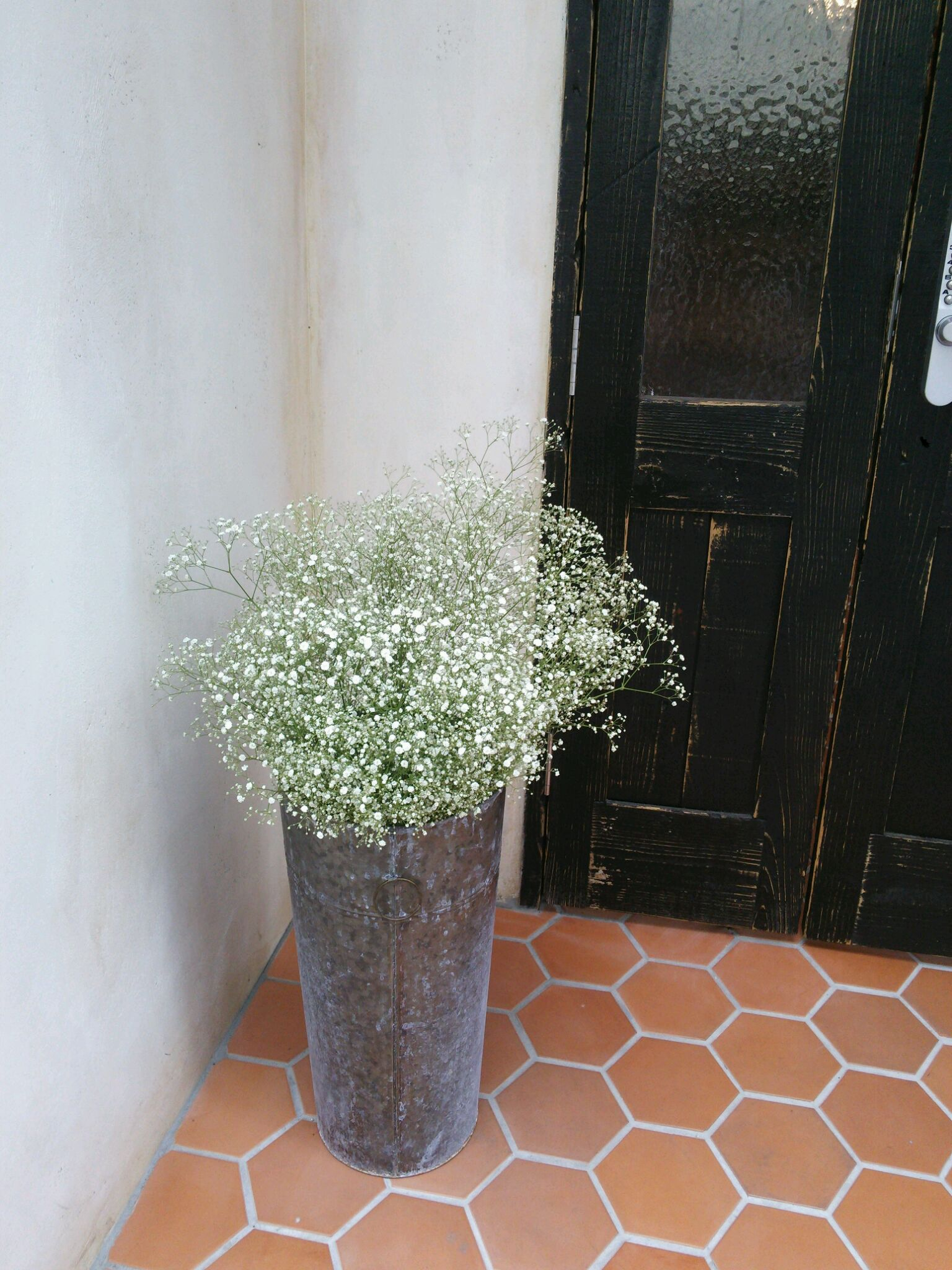 かすみ草と紫陽花