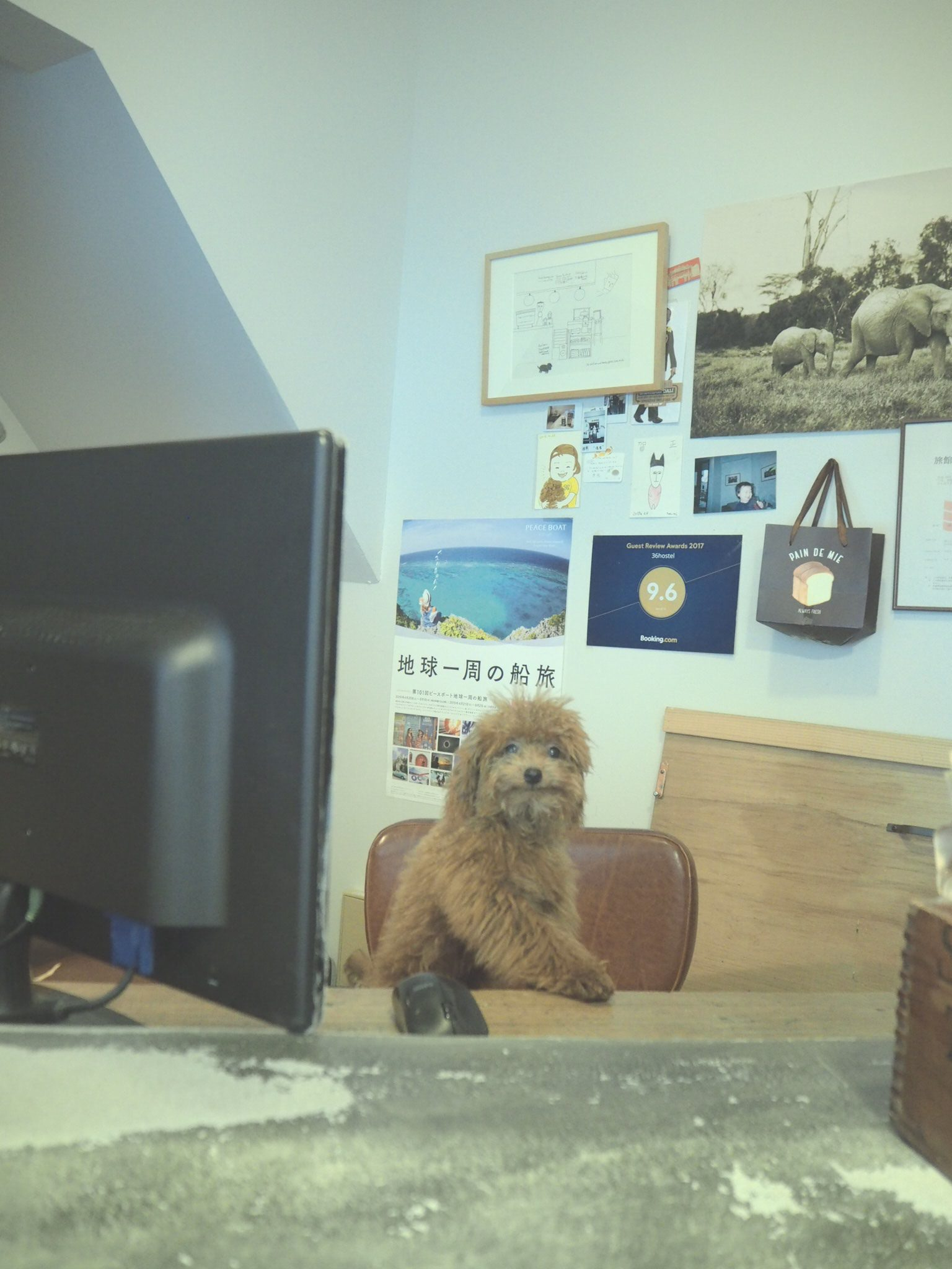 New receptionist